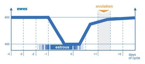 graph_eds