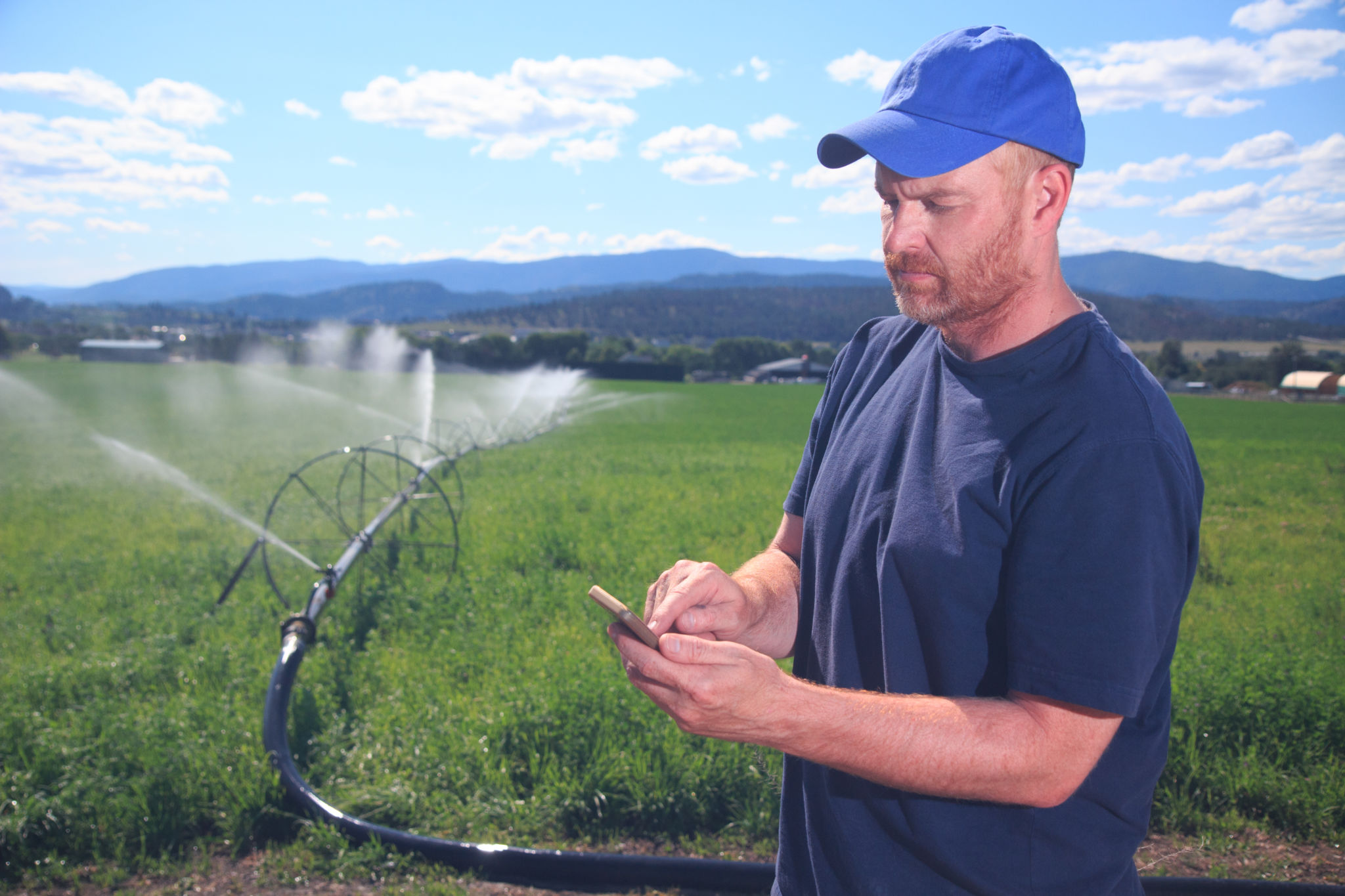 A royalty free image from the farming industry of a farm worker in front of an irrigated field using a smartphone to text or make a calll.