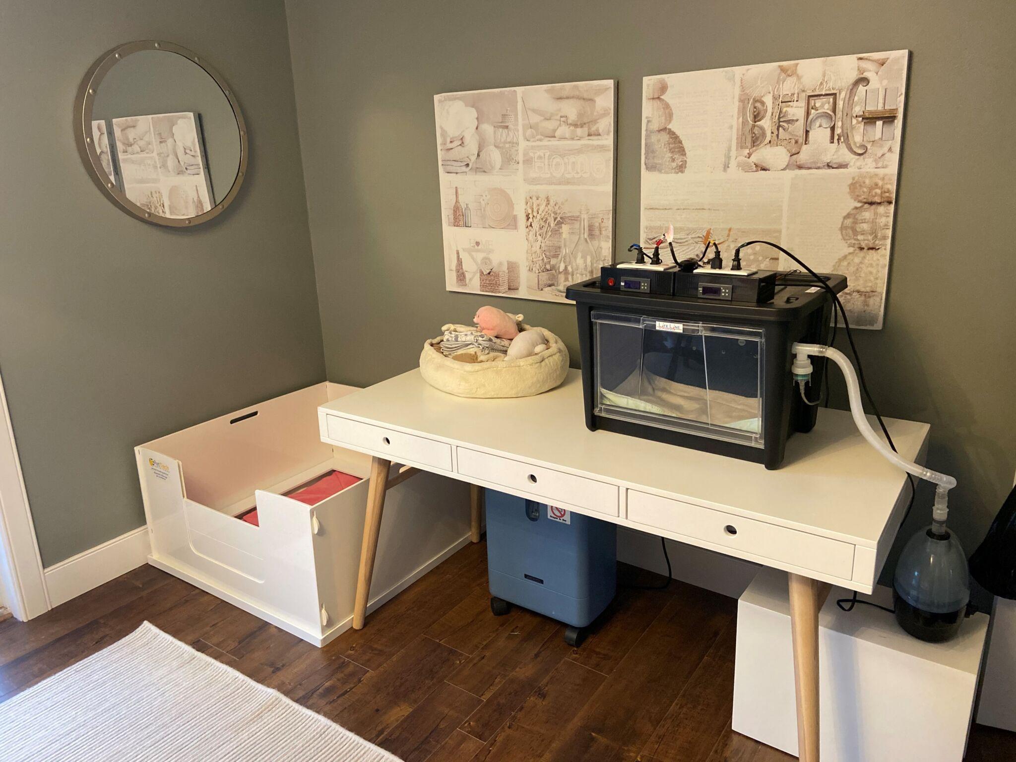 pettech-45-set-up